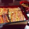 天下の台所、大阪の上方鰻 「本家 柴藤」