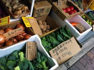 新鮮そうな野菜