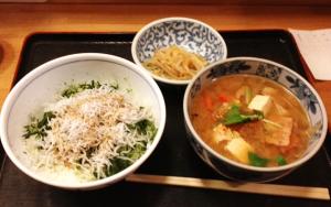 シラス丼+中トン汁定食